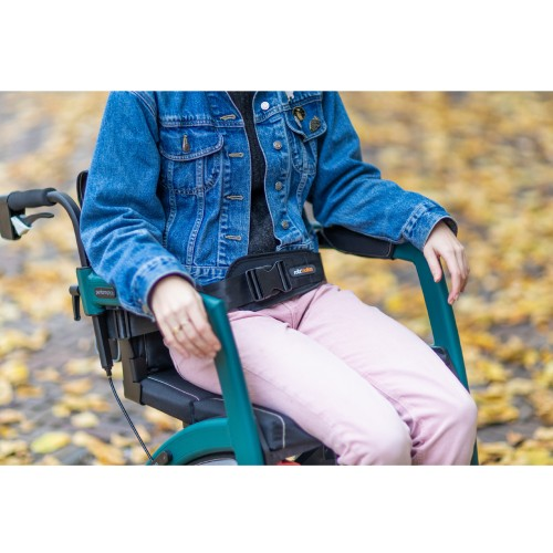 Rollz Motion seatbelt attached to the wheelchair