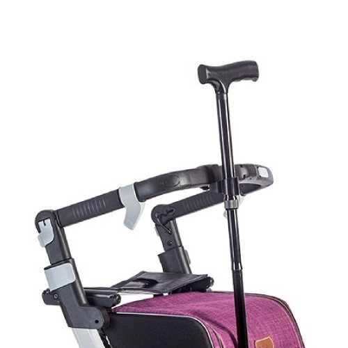Cane holder attached to the frame of a Rollz Flex rollator